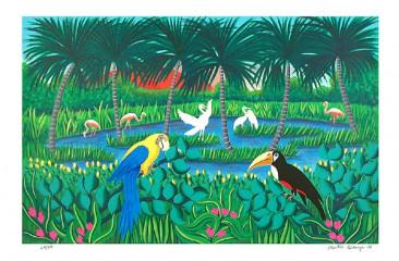 Selva tropical: Tucán